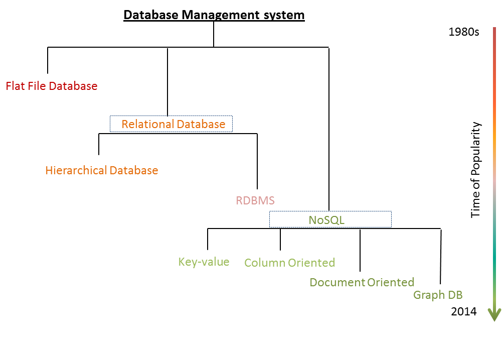 how to use database management system