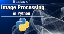 Basics of Image Processing in Python