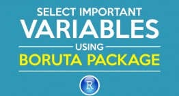 How to perform feature selection (i.e. pick important variables) using Boruta Package in R ?